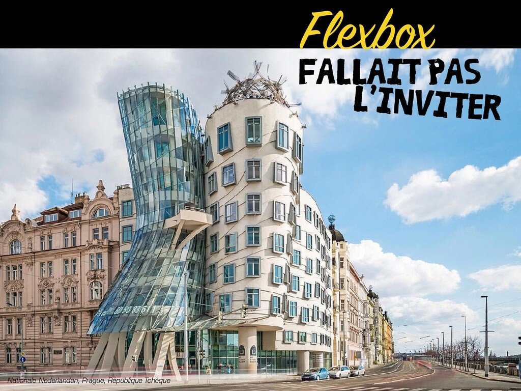 FALLAIT PAS Flexbox Nationale-Nederlanden, Prag...