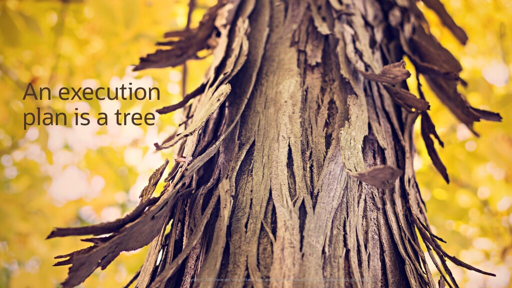 Tree picture An execution plan is a tree Copyri...
