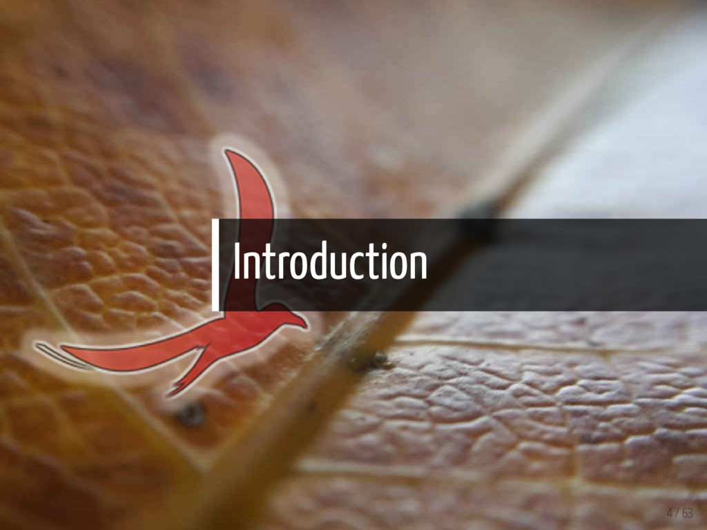 Introduction 4 / 63