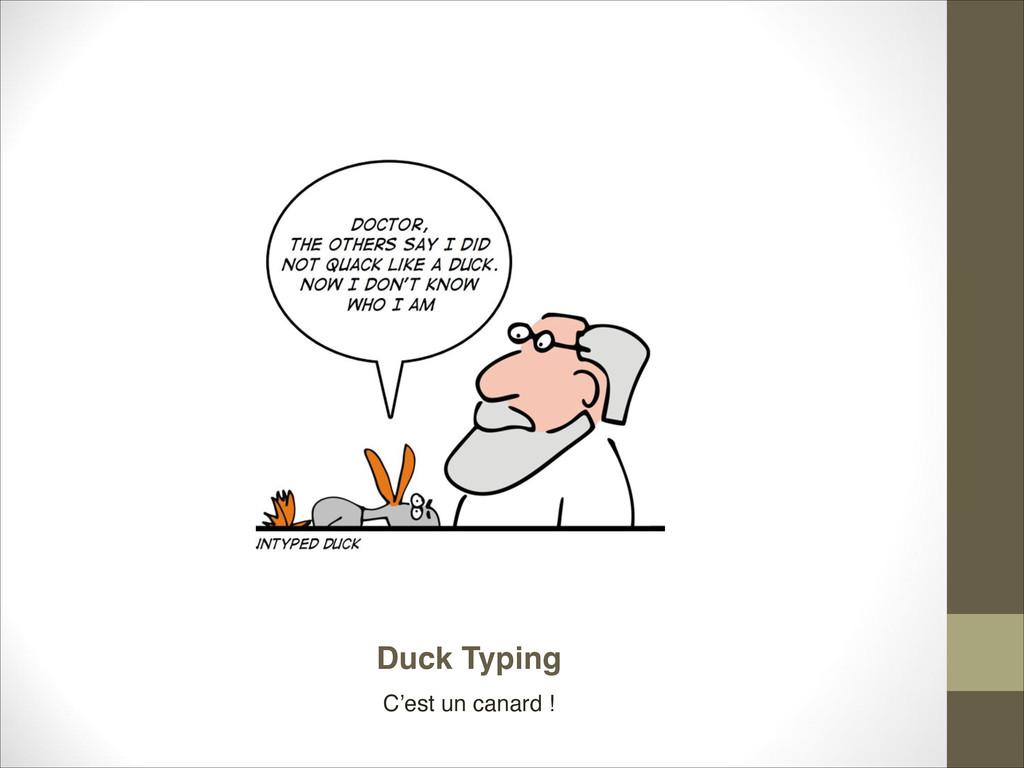 Duck Typing C'est un canard !
