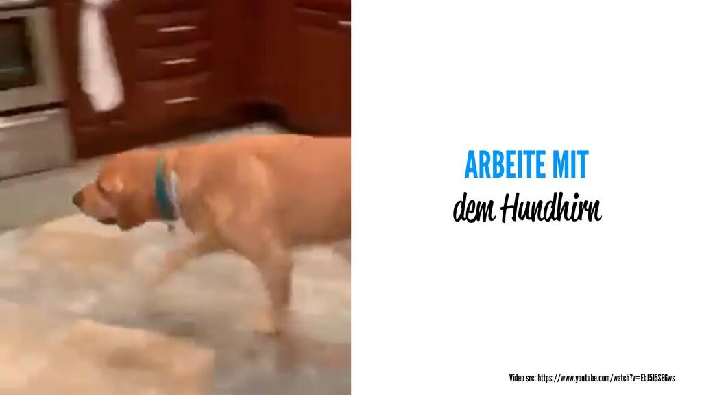 ARBEITE MIT dem Hundhirn Video src: https://www...