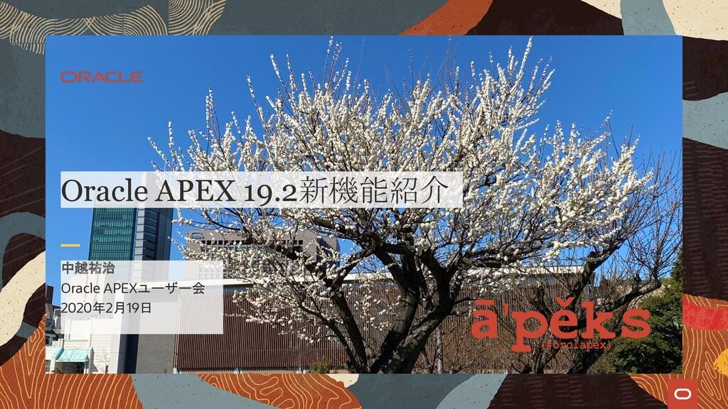 Oracle APEXユーザー会 2020年2月19日 中越祐治 Oracle APEX 19...