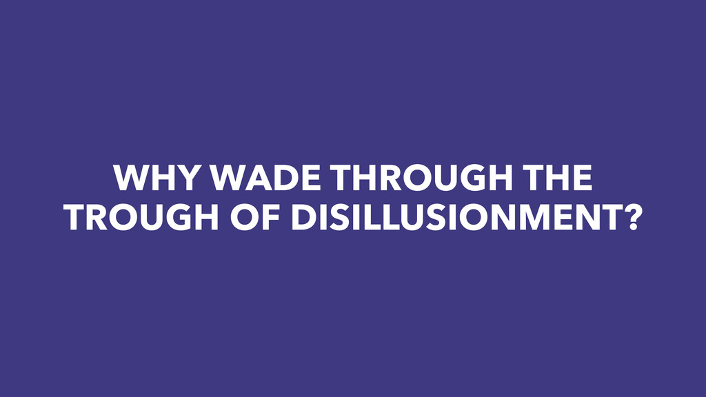 WHY WADE THROUGH THE TROUGH OF DISILLUSIONMENT?