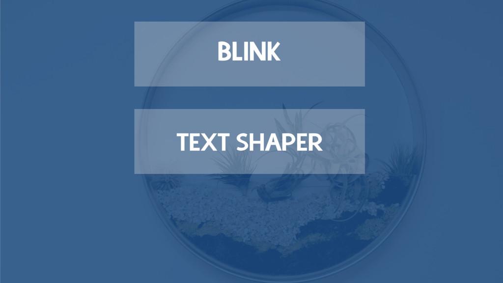 TEXT SHAPER BLINK