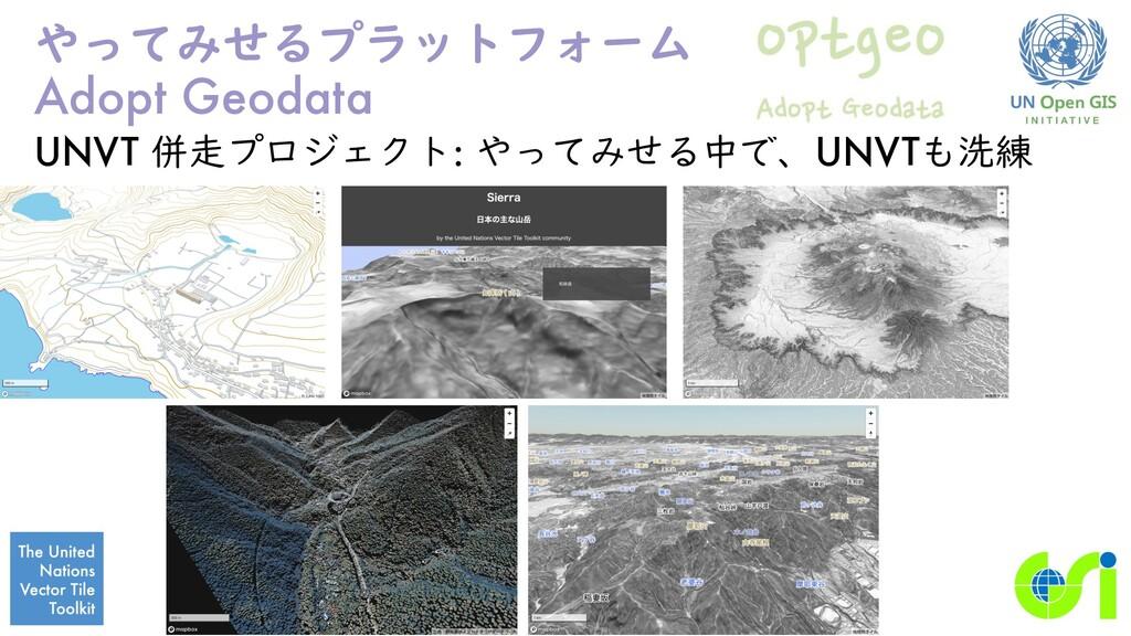 やってみせるプラットフォーム Adopt Geodata UNVT 併走プロジェクト: やって...