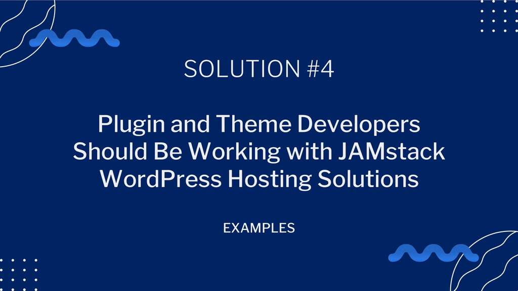 SOLUTION #4 Plugin and Theme Developers Should ...