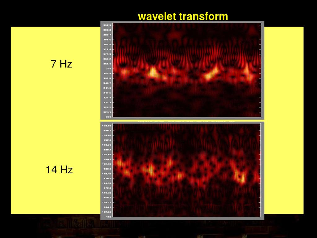 7 Hz 14 Hz wavelet transform