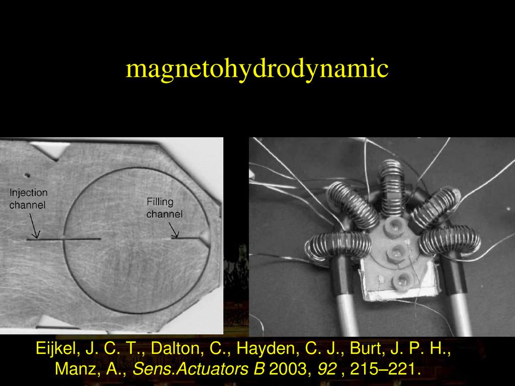 magnetohydrodynamic Eijkel, J. C. T., Dalton, C...