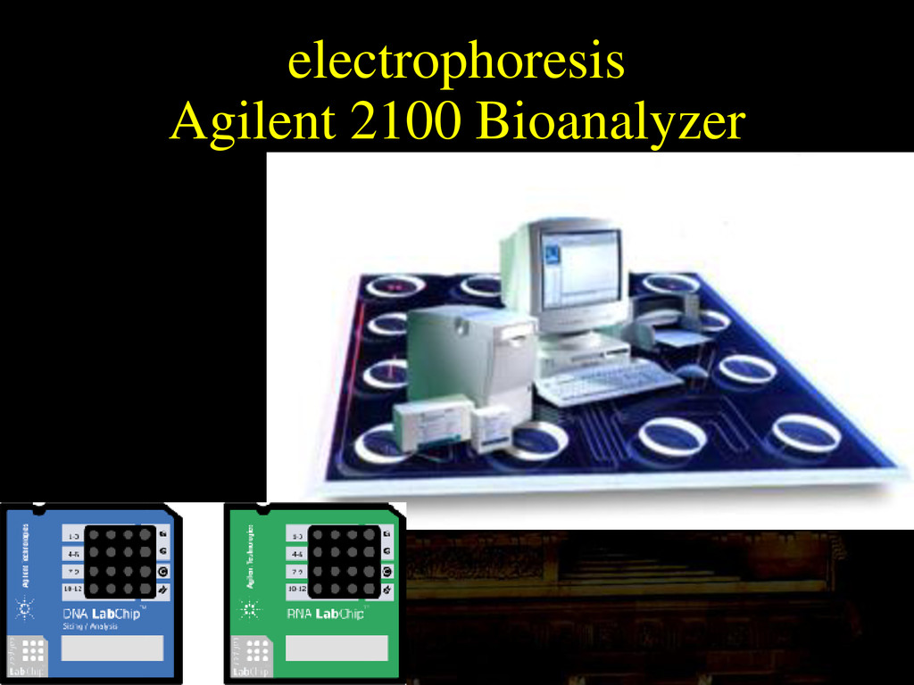 Agilent 2100 Bioanalyzer electrophoresis