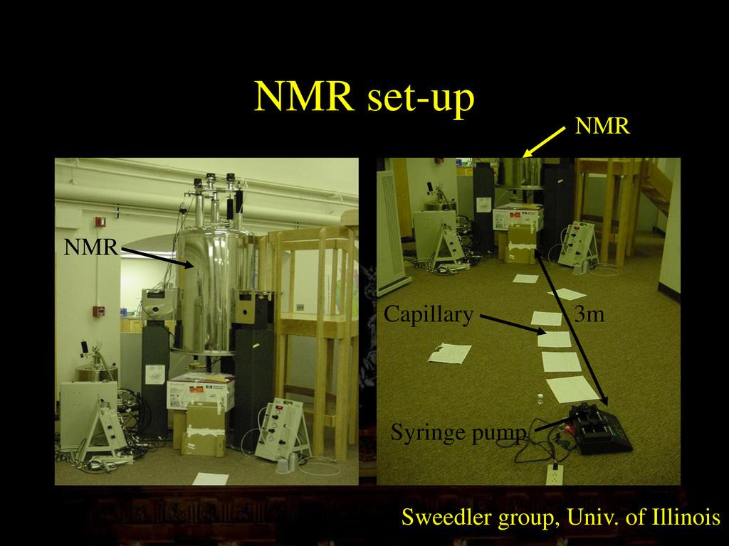 NMR set-up Syringe pump 3m Capillary NMR NMR Sw...