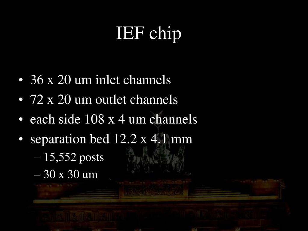 IEF chip • 36 x 20 um inlet channels • 72 x 20 ...