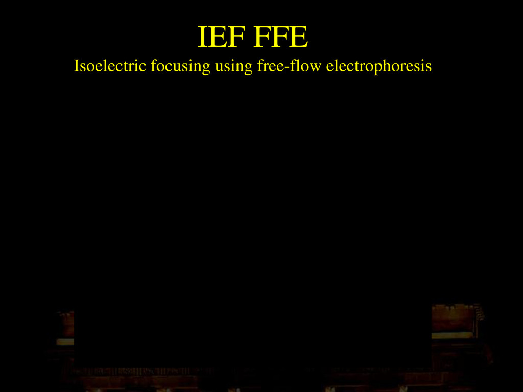 IEF FFE Isoelectric focusing using free-flow el...