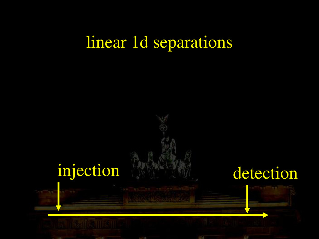 linear 1d separations injection detection