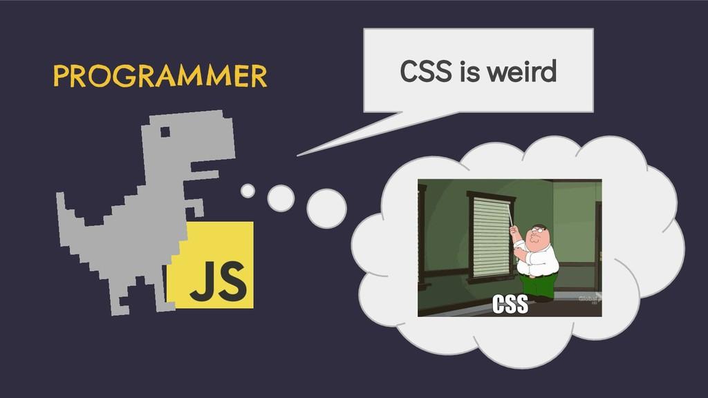 PROGRAMMER CSS is weird