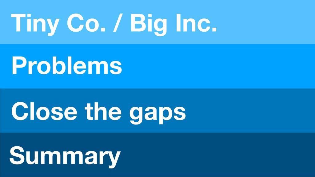 Tiny Co. / Big Inc. Problems Close the gaps Sum...