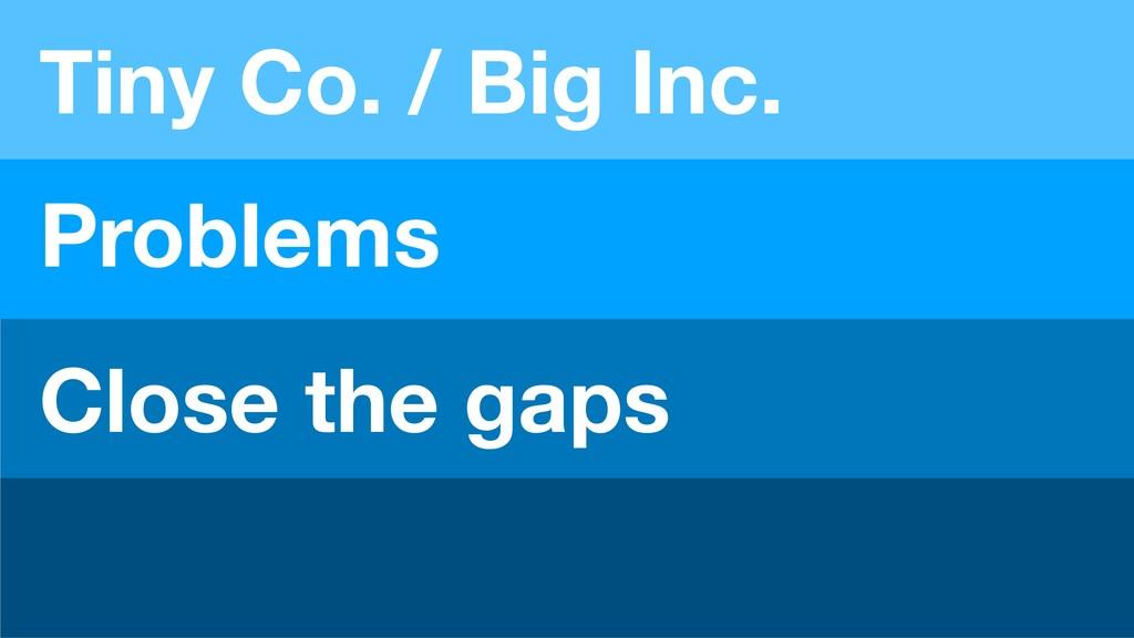 Tiny Co. / Big Inc. Problems Close the gaps