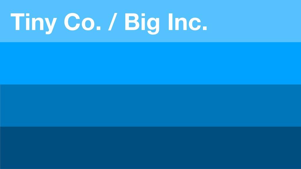 Tiny Co. / Big Inc.