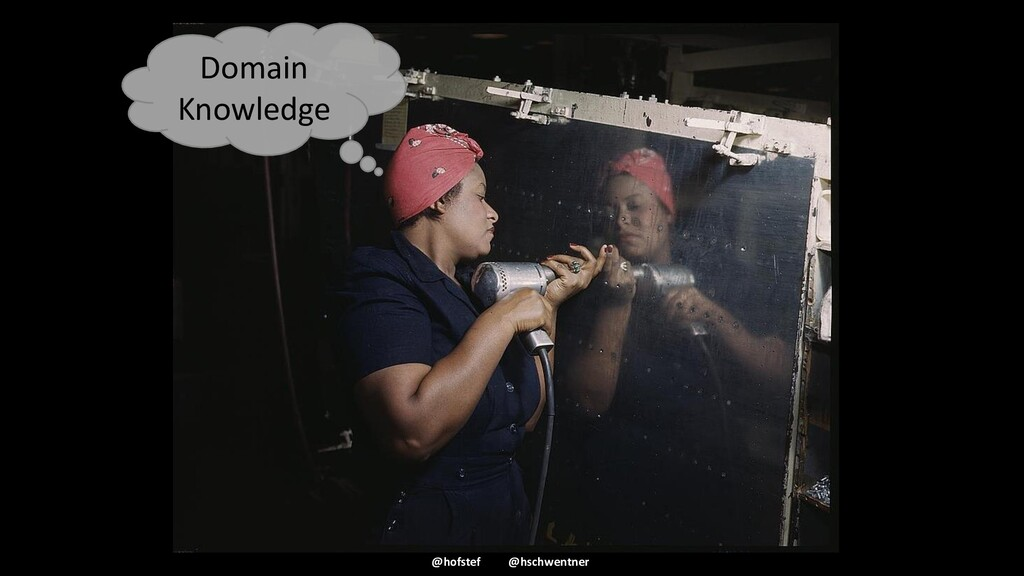 @hofstef @hschwentner Domain Knowledge
