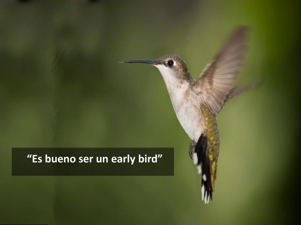 """""""Es bueno ser un early bird"""""""