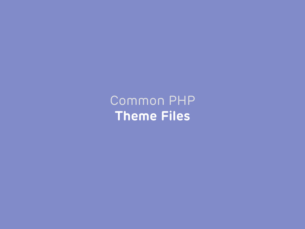 Common PHP Theme Files