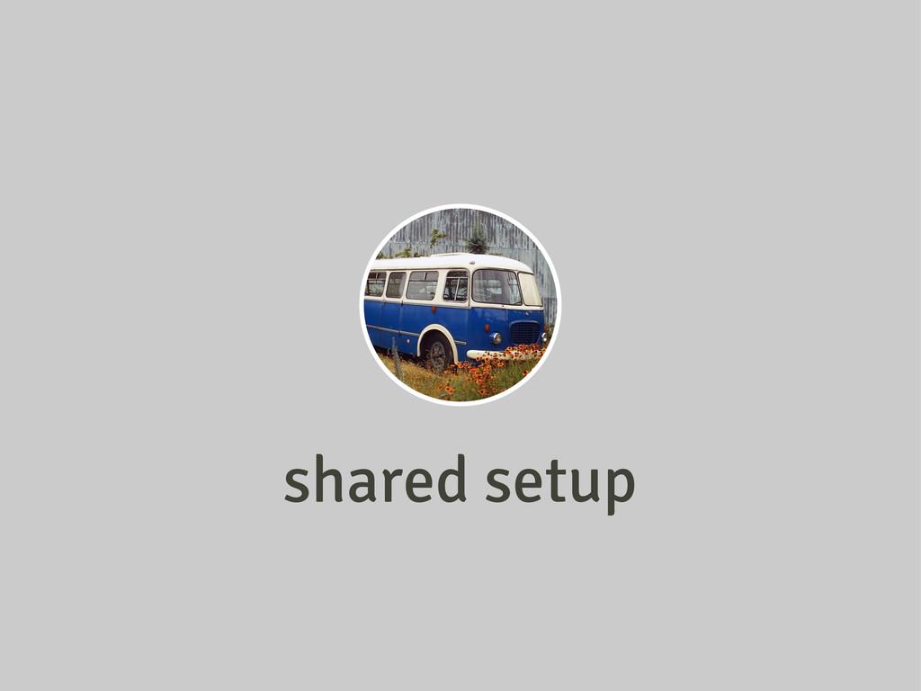 shared setup