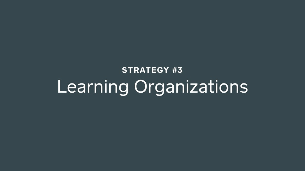 Learning Organizations STRATEGY #3