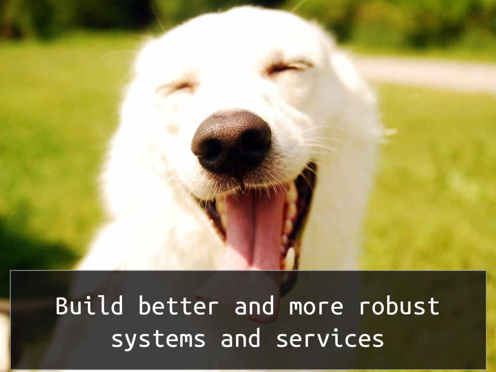 Build better and more robust systems and servic...