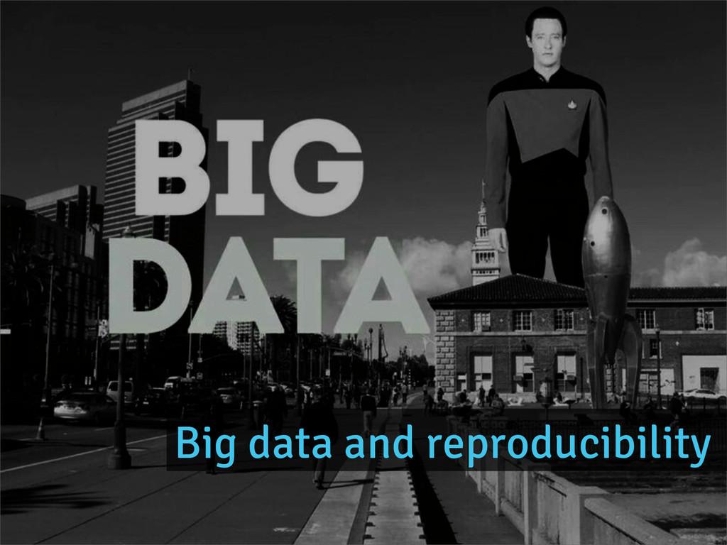 Big data and reproducibility