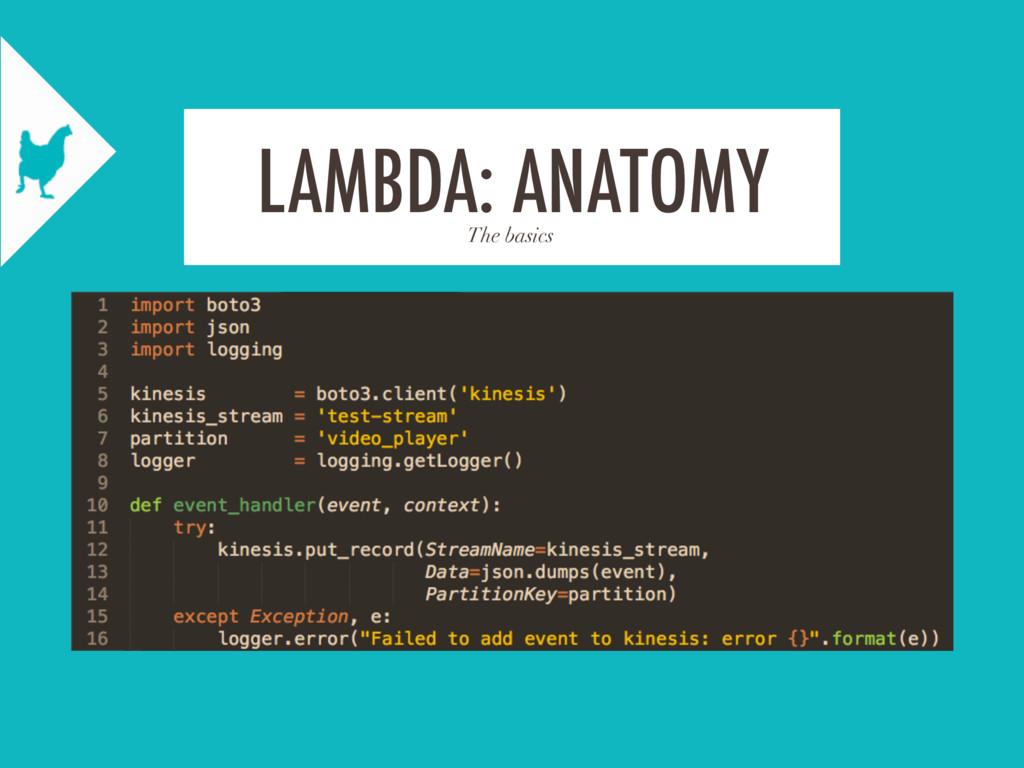The basics LAMBDA: ANATOMY