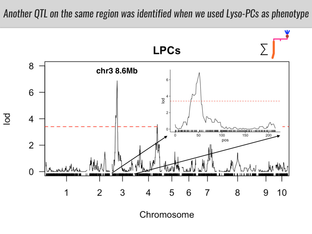 Another QTL on the same region was identified w...