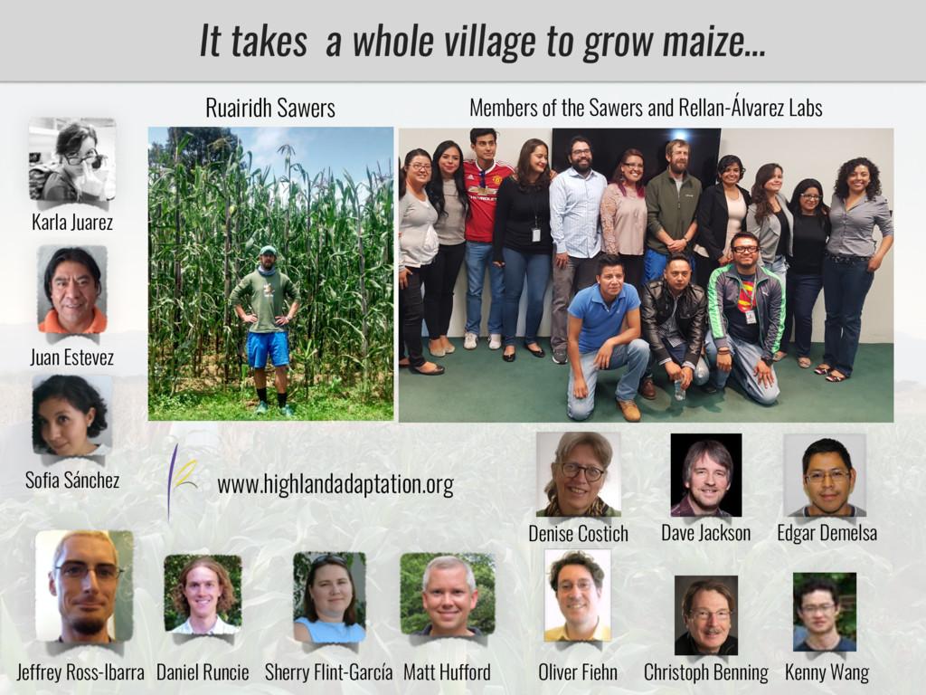 It takes a whole village to grow maize… Karla J...