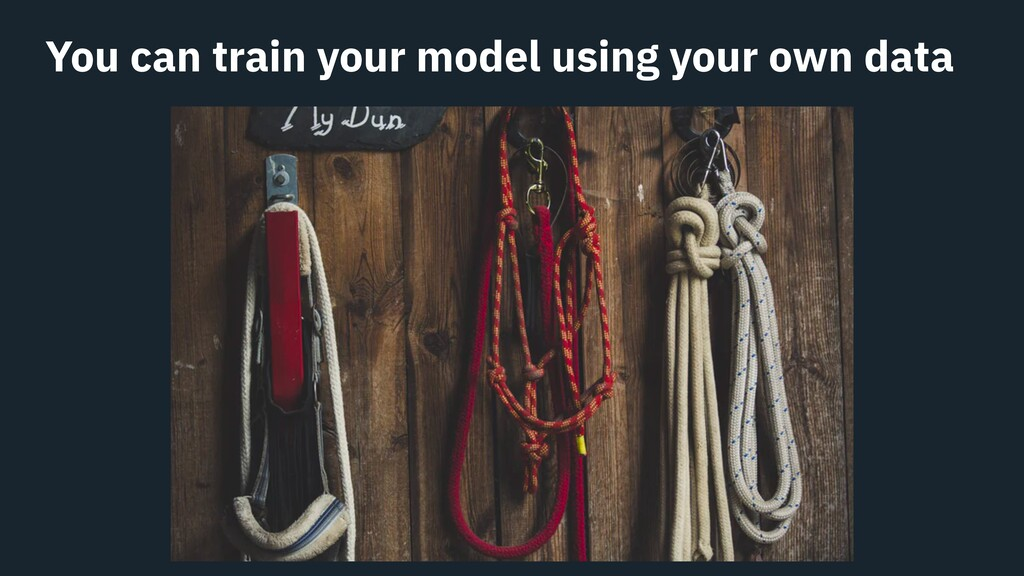 You can train your model using your own data