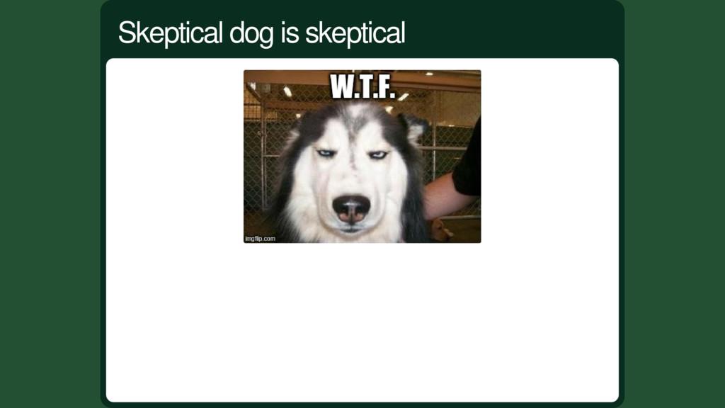 Skeptical dog is skeptical
