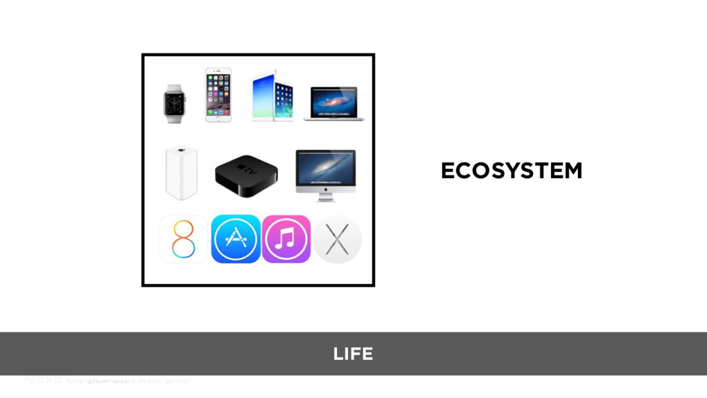 ECOSYSTEM LIFE