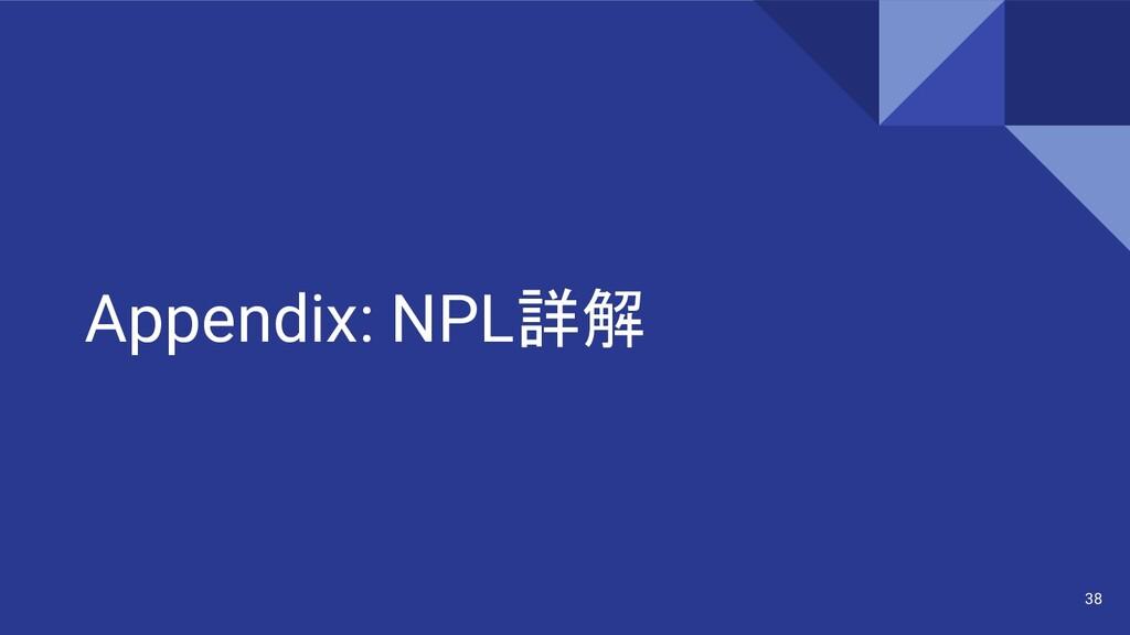 Appendix: NPL詳解 38