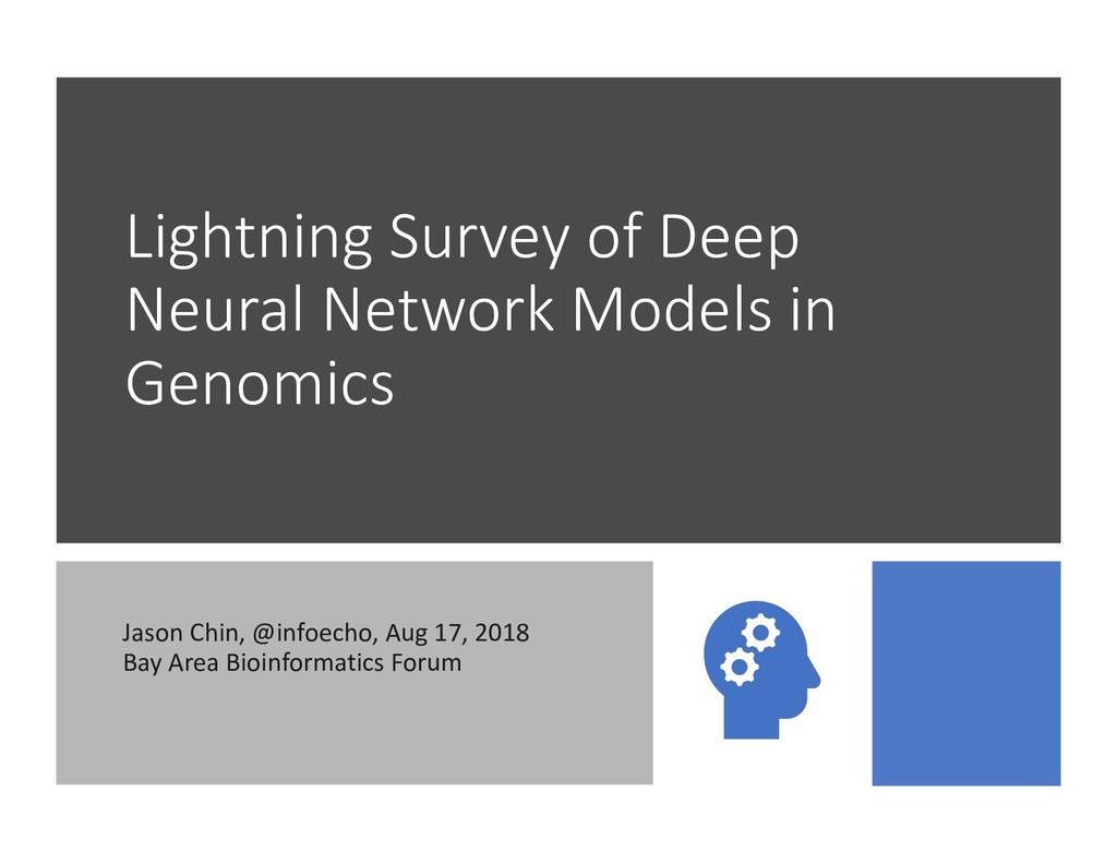 Lightning Survey of Deep Neural Network Models ...