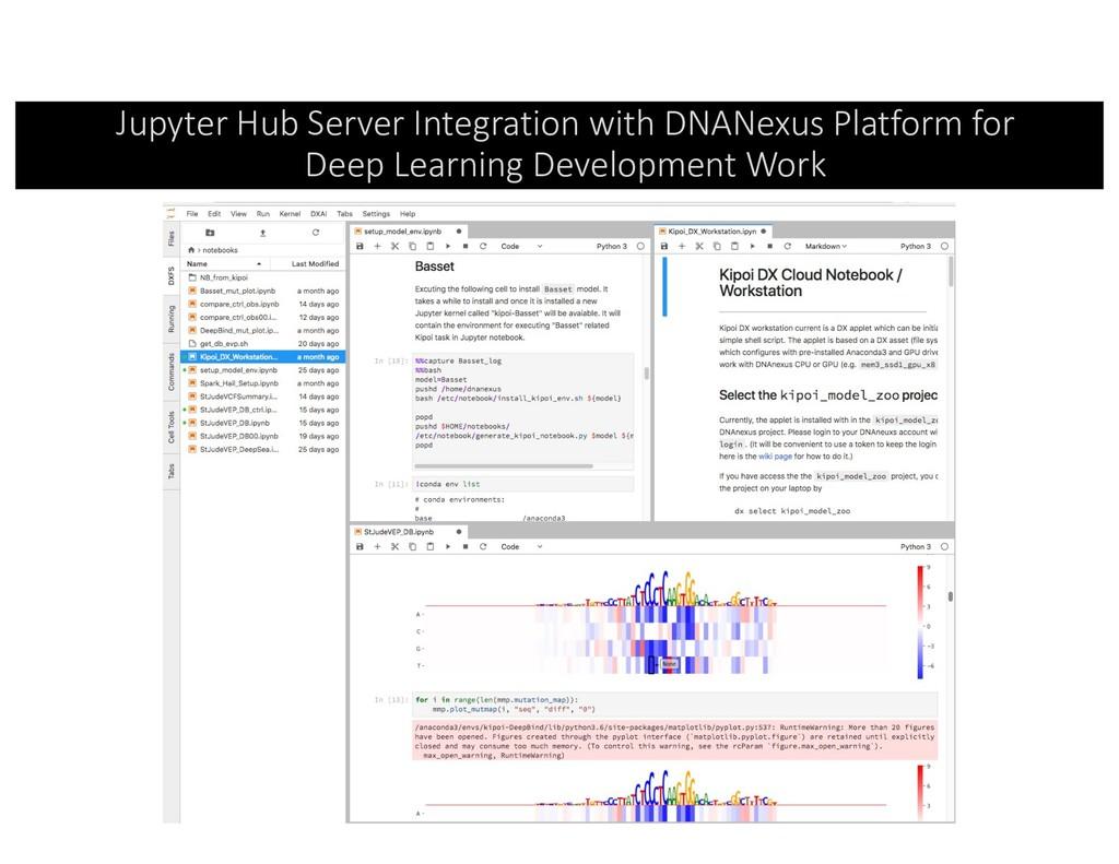 Jupyter Hub Server Integration with DNANexus Pl...