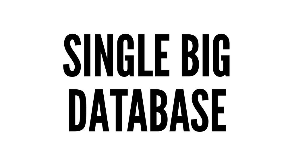SINGLE BIG DATABASE