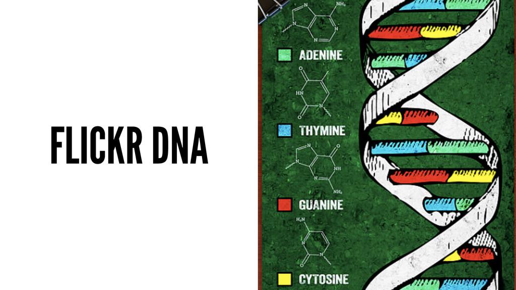 FLICKR DNA