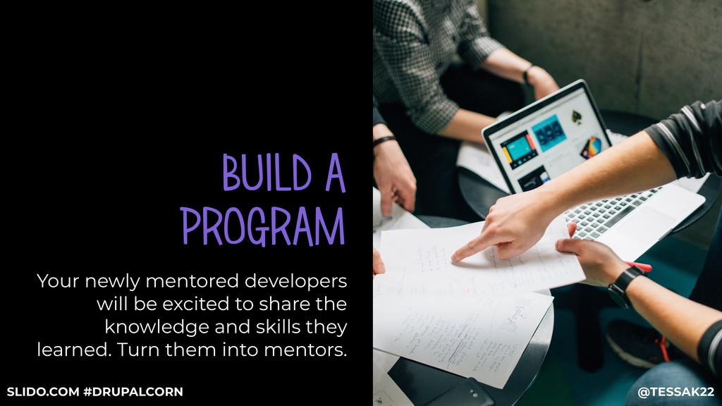 BUILD A PROGRAM Your newly mentored developers ...