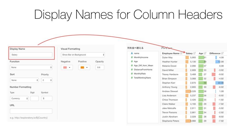 Display Names for Column Headers