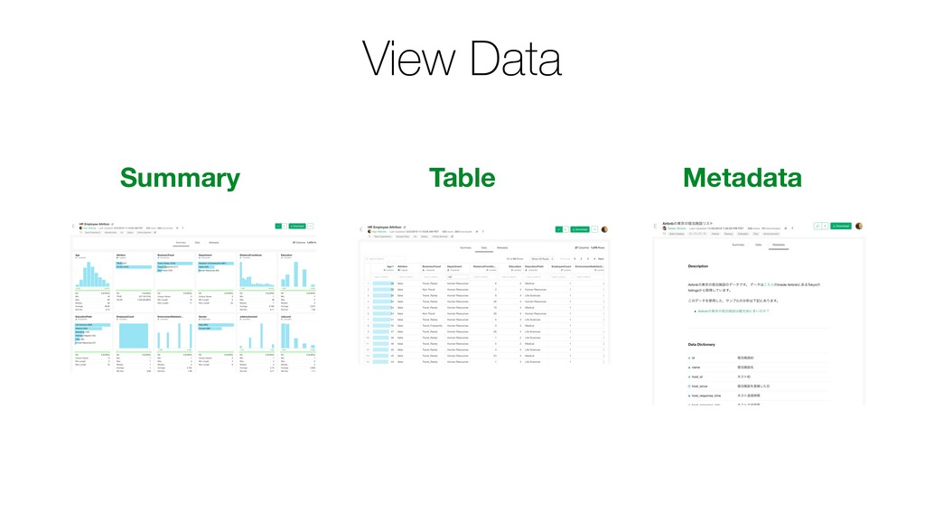 View Data Summary Table Metadata