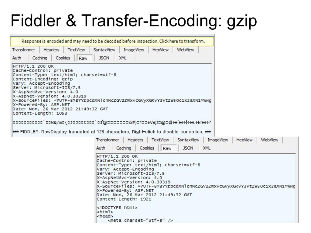 Fiddler & Transfer-Encoding: gzip