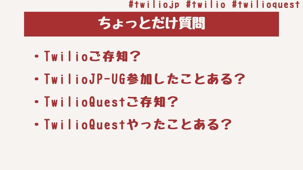 ちょっとだけ質問 #twiliojp#twilio#twilioquest ・Twilio...