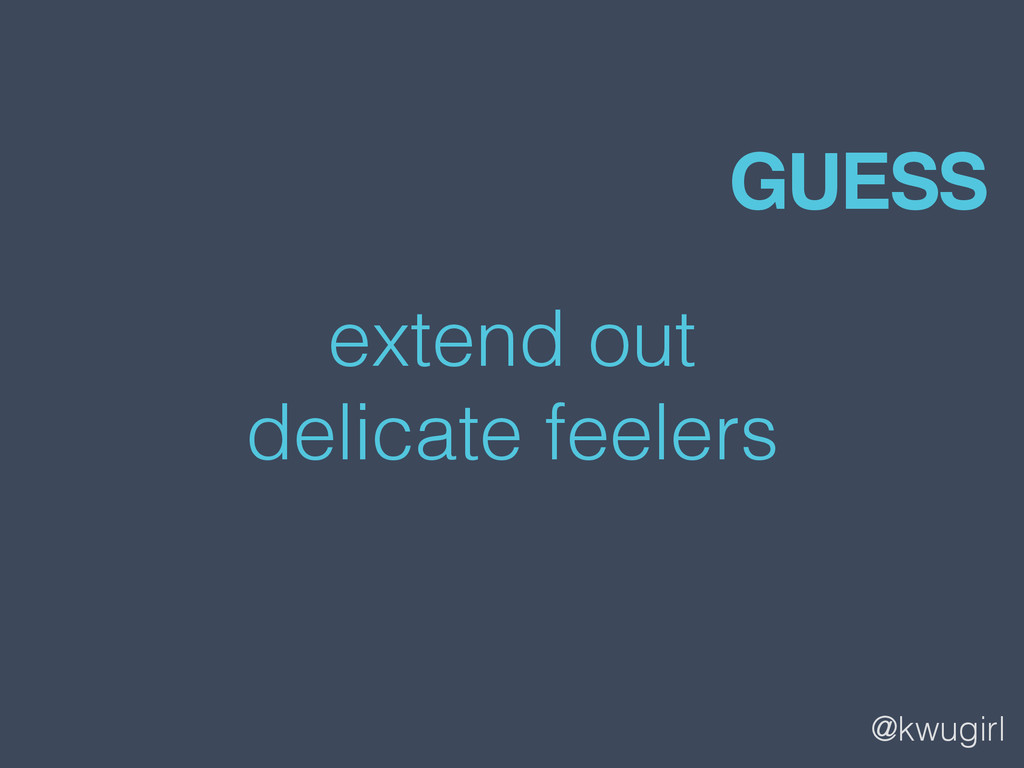 @kwugirl extend out delicate feelers GUESS