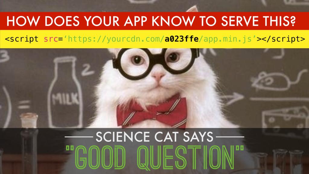 """SCIENCE CAT SAYS """"GOOD QUESTION"""" <script src='h..."""