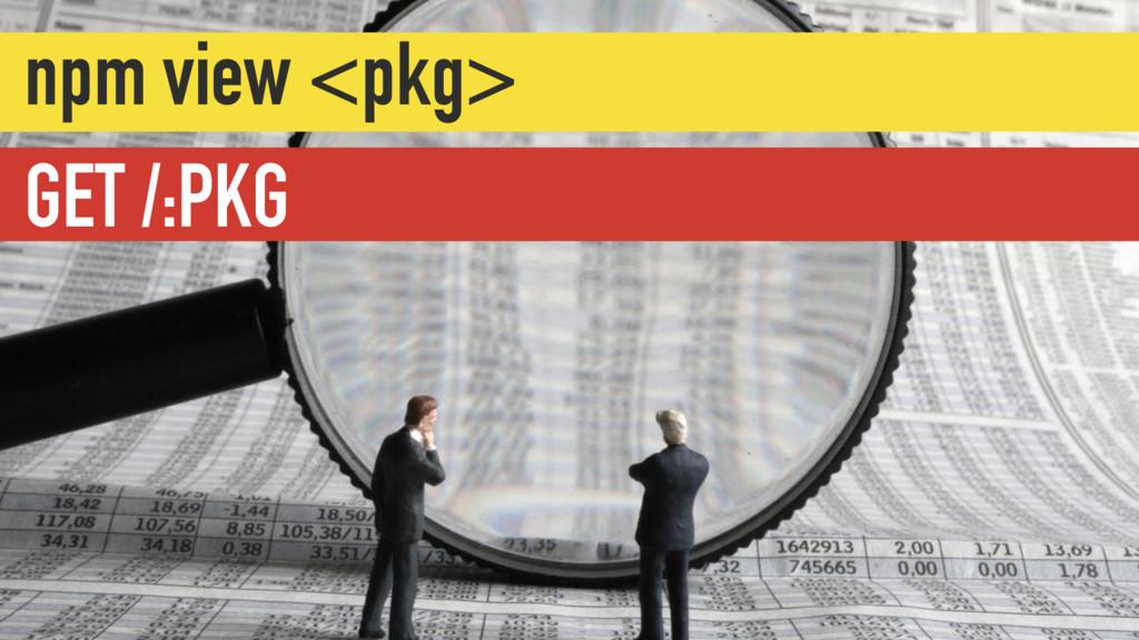 GET /:PKG npm view <pkg>