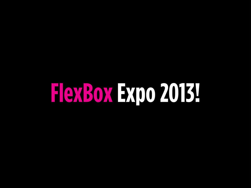 FlexBox Expo 2013!