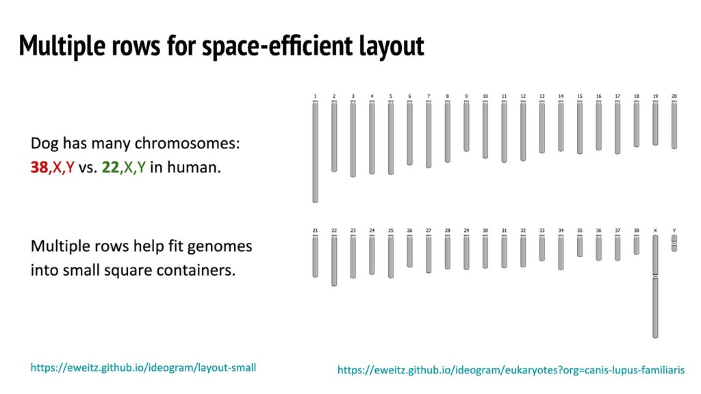 Multiple rows for space-efficient layout