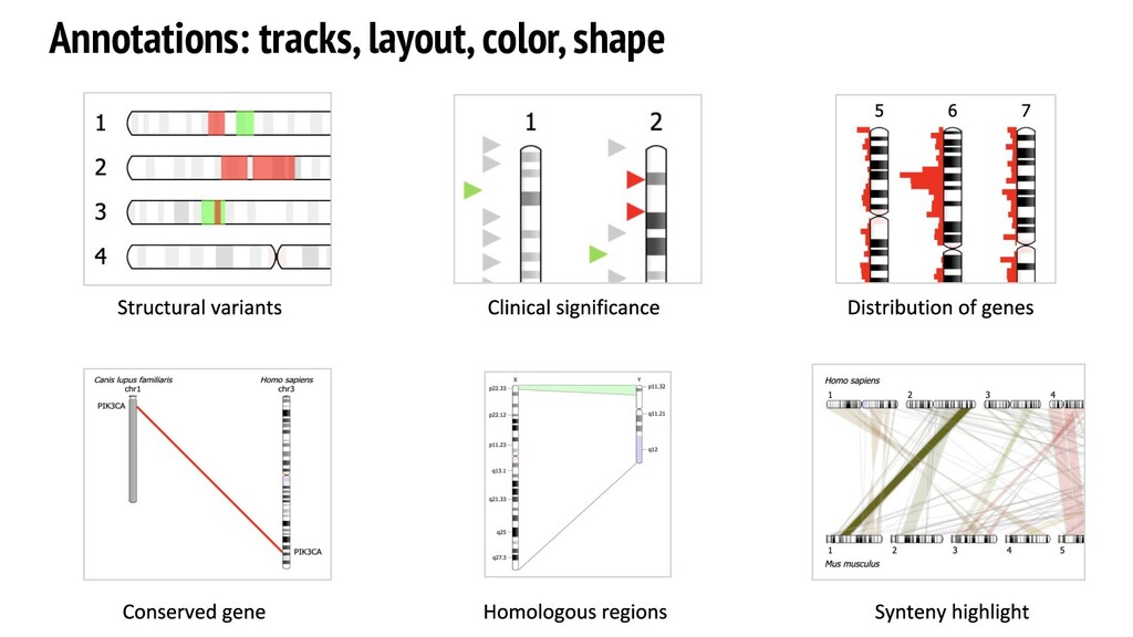 Annotations: tracks, layout, color, shape